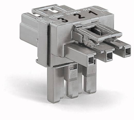 Netz-T-Verteiler Netz-Stecker - Netz-Buchse, Netz-Buchse Gesamtpolzahl: 3 Hellgrün WAGO 50 St.