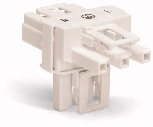 Netz-T-Verteiler Netz-Stecker - Netz-Buchse, Netz-Buchse Gesamtpolzahl: 3 Weiß WAGO 770-665 50 St.