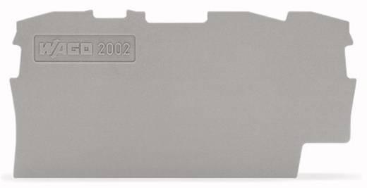 Abschluss- und Zwischenplatte 2002-1391 WAGO Inhalt: 100 St.