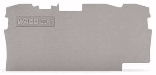 Abschluss- und Zwischenplatte 2004-1391 WAGO Inhalt: 100 St.