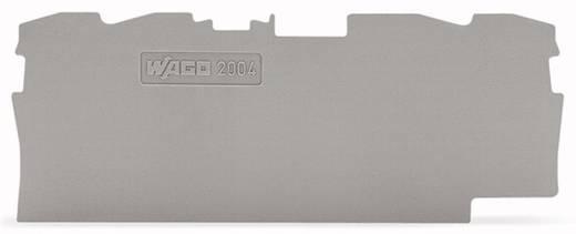 Abschluss- und Zwischenplatte 2004-1491 WAGO Inhalt: 100 St.