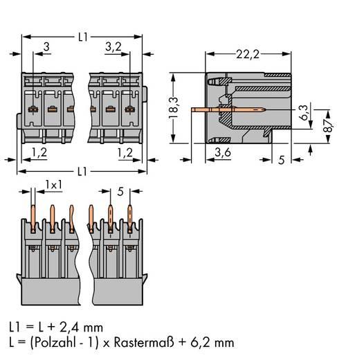 WAGO Buchsengehäuse-Platine 769 Polzahl Gesamt 4 Rastermaß: 5 mm 769-634 50 St.