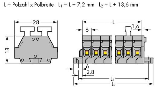 Klemmenleiste 6 mm Zugfeder Belegung: L Grau WAGO 261-424/341-000 50 St.