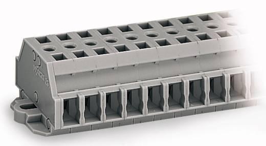 Klemmenleiste 6 mm Zugfeder Belegung: L Grau WAGO 261-425 50 St.