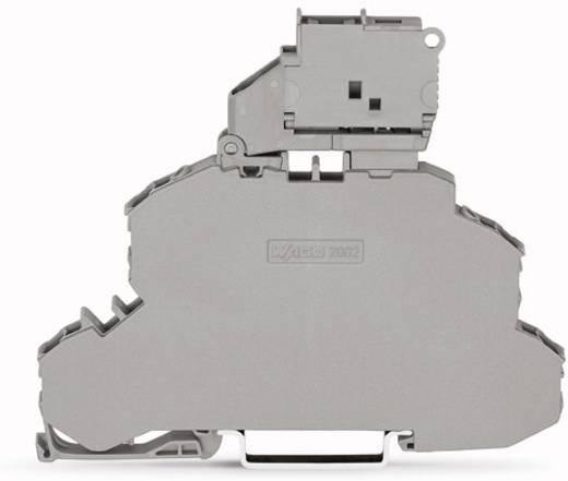 Doppelstock-Sicherungsklemme 6.20 mm Zugfeder Belegung: L, L Grau WAGO 2002-2611 25 St.