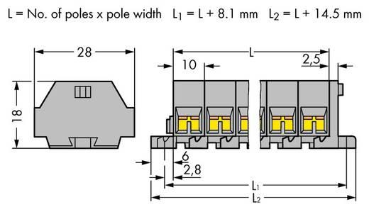 Klemmenleiste 10 mm Zugfeder Belegung: L Grau WAGO 261-209 25 St.