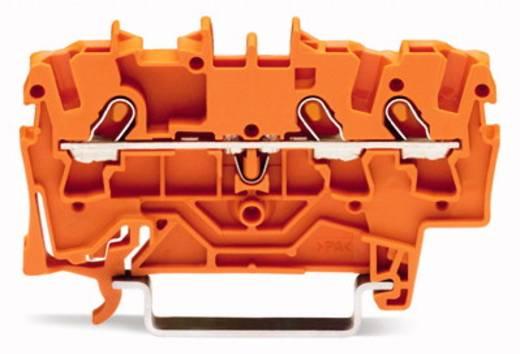 Durchgangsklemme 4.20 mm Zugfeder Orange WAGO 2001-1302 100 St.