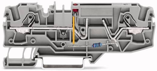 Sicherungsklemme 7.50 mm Zugfeder Grau WAGO 2006-1681/1000-414 25 St.