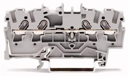 Durchgangsklemme 4.20 mm Zugfeder Schwarz WAGO 2001-1405 100 St.