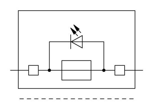 Sicherungsklemme 7.50 mm Zugfeder Grau WAGO 2006-1631/1099-541 25 St.