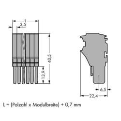 Mostík pre svorkovnice WAGO, WAGO 2020-107, 25.2 mm x 40.5 mm , 25 ks
