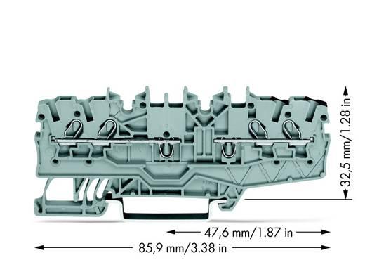 Durchgangsklemme 3.50 mm Zugfeder Belegung: L Grau WAGO 2000-2141 50 St.