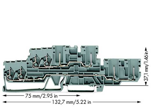 Basisklemme 5 mm Zugfeder Belegung: L, L Grau WAGO 870-131 40 St.