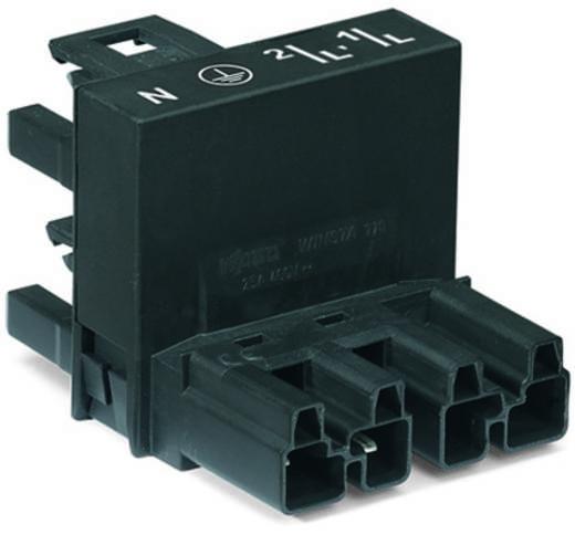Netz-H-Verteiler Netz-Stecker - Netz-Buchse, Netz-Buchse Gesamtpolzahl: 4 Schwarz WAGO 25 St.