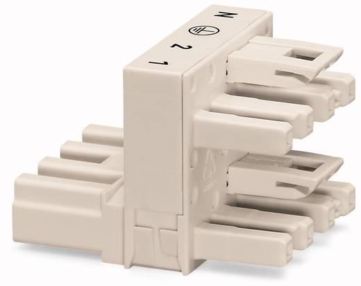 Netz-H-Verteiler Netz-Stecker - Netz-Buchse, Netz-Buchse Gesamtpolzahl: 4 Weiß WAGO 25 St.