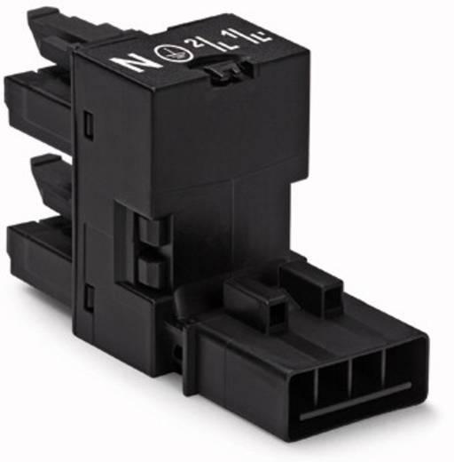 Netz-H-Verteiler Netz-Stecker - Netz-Buchse, Netz-Buchse Gesamtpolzahl: 4 Schwarz WAGO 50 St.