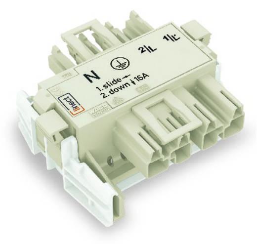 Netz-Adapter Netz-Stecker - Netz-Buchse Gesamtpolzahl: 4 Weiß WAGO 25 St.