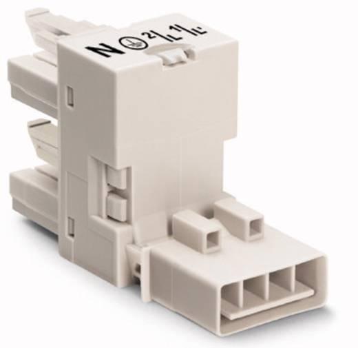 Netz-H-Verteiler Netz-Stecker - Netz-Buchse, Netz-Buchse Gesamtpolzahl: 4 Weiß WAGO 50 St.