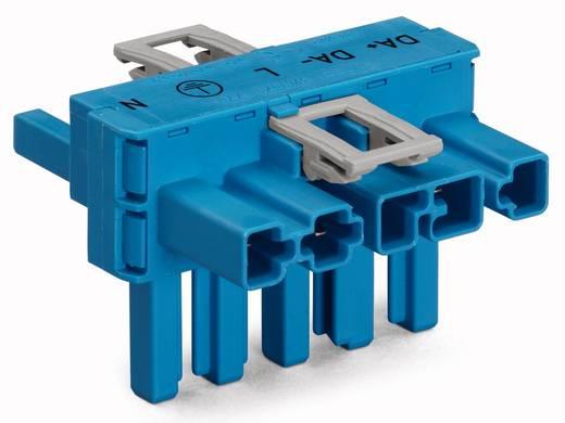 Netz-T-Verteiler Netz-Stecker - Netz-Buchse, Netz-Buchse Gesamtpolzahl: 5 Blau WAGO 50 St.