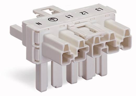 Netz-T-Verteiler Netz-Stecker - Netz-Buchse, Netz-Buchse Gesamtpolzahl: 5 Weiß WAGO 770-671 50 St.
