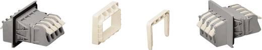 Buchsengehäuse-Kabel 828 Polzahl Gesamt 4 WAGO 828-264/313-000 Rastermaß: 11.50 mm 20 St.