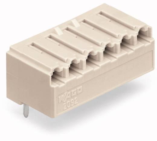 Buchsengehäuse-Platine 2092 Polzahl Gesamt 4 WAGO 2092-1324 Rastermaß: 5 mm 200 St.