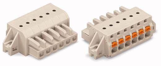 WAGO Buchsengehäuse-Kabel 2721 Polzahl Gesamt 14 Rastermaß: 5 mm 2721-114/031-000 10 St.