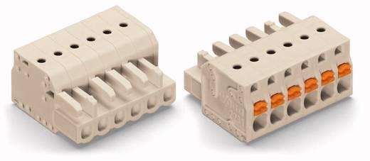 WAGO Buchsengehäuse-Kabel 2721 Polzahl Gesamt 4 Rastermaß: 5 mm 2721-104/026-000 100 St.