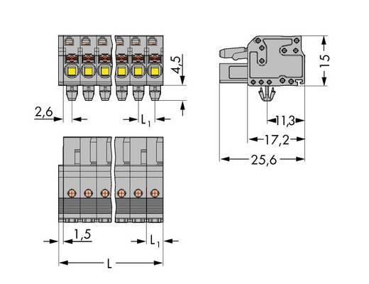 Buchsengehäuse-Kabel 2231 Polzahl Gesamt 19 WAGO 2231-119/008-000 Rastermaß: 5 mm 10 St.