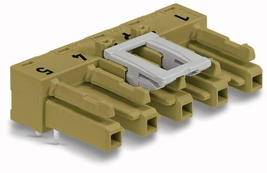 Netz-Steckverbinder WINSTA MIDI Serie (Netzsteckverbinder) WINSTA MIDI Buchse, Einbau horizontal Gesamtpolzahl: 5 25 A H