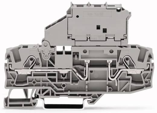 Sicherungsklemme 7.50 mm Zugfeder Grau WAGO 2006-1621/1000-836 25 St.