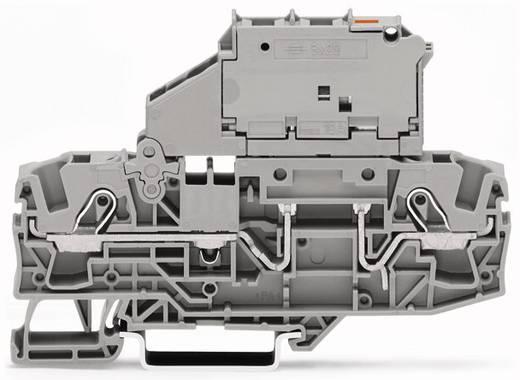 Sicherungsklemme 7.50 mm Zugfeder Grau WAGO 2006-1611/1000-542 25 St.