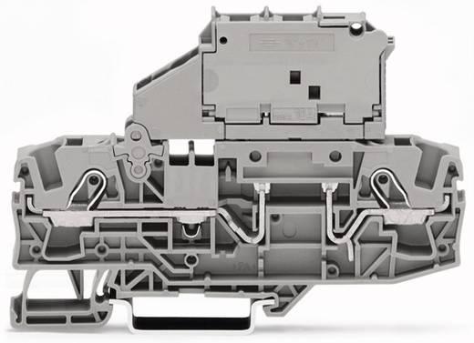 Sicherungsklemme 7.50 mm Zugfeder Grau WAGO 2006-1631/1000-836 25 St.