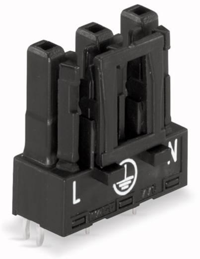 Netz-Steckverbinder Serie (Netzsteckverbinder) WINSTA MIDI Buchse, Einbau vertikal Gesamtpolzahl: 3 25 A Weiß WAGO 100