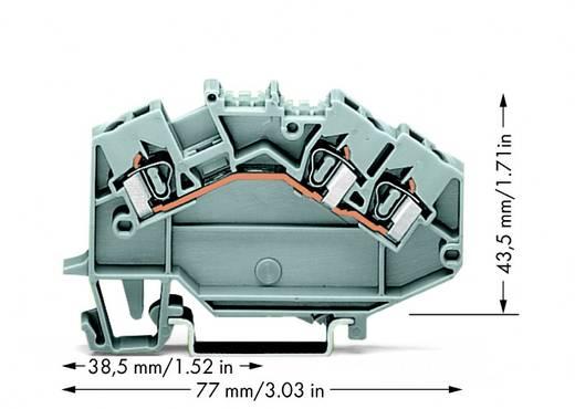Durchgangsklemme 5 mm Zugfeder Belegung: L Grau WAGO 780-631 50 St.