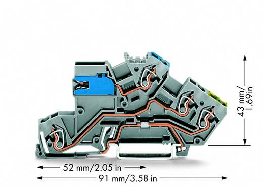 Installationsetagenklemme 5 mm Zugfeder Belegung: NT, L, PE Grau WAGO 775-641 50 St.