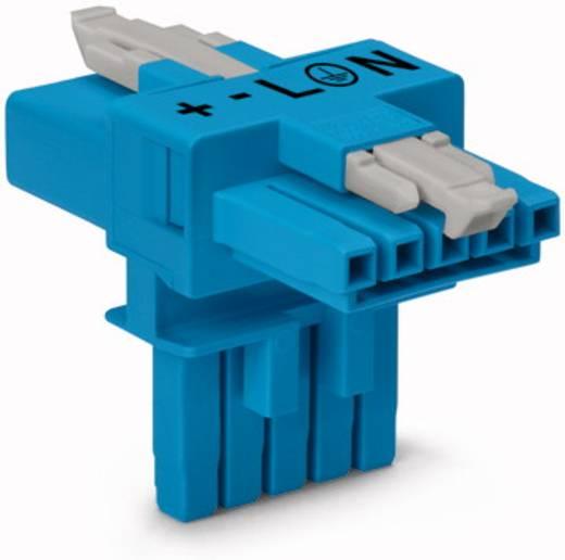 Netz-T-Verteiler Netz-Stecker - Netz-Buchse, Netz-Buchse Gesamtpolzahl: 5 Blau WAGO 25 St.