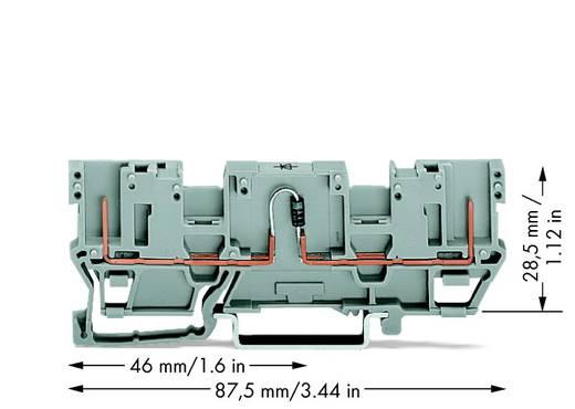 Diodenklemme 5 mm Zugfeder Grau WAGO 769-208/281-411 50 St.