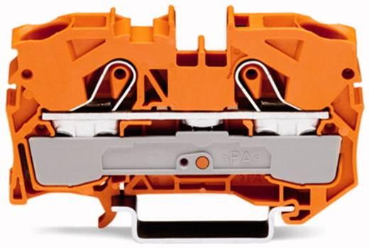 Durchgangsklemme 10 mm Zugfeder Orange WAGO 2010-1202 25 St.