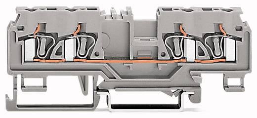 Schutzleiterklemme 5 mm Zugfeder Belegung: PE Grün-Gelb WAGO 880-837 50 St.