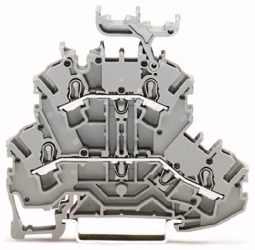 Doppelstock-Durchgangsklemme 5.20 mm Zugfeder Belegung: L, L Grau WAGO 2002-2231 50 St.