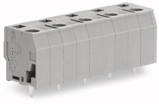 Federkraftklemmblock 2.50 mm² Polzahl 9 739-3205 WAGO Grau 100 St.