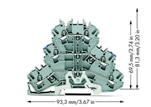 Dreistock-Schirmleiterklemme 5.20 mm Zugfeder Belegung: N, L Grau WAGO 2002-3218 50 St.