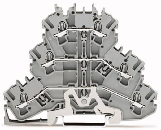 Dreistock-Schirmleiterklemme 5.20 mm Zugfeder Belegung: L, L Grau WAGO 2002-3228 50 St.
