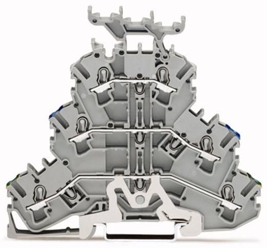 Dreistock-Schutzleiterklemme 5.20 mm Zugfeder Belegung: PE, N, L Grau WAGO 2002-3247 50 St.