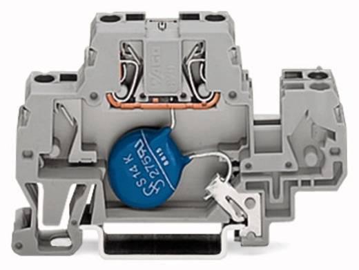 Einzelklemme 10 mm Zugfeder Belegung: L Grau WAGO 870-523/281-587 25 St.