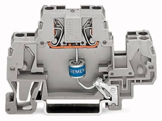 Einzelklemme 10 mm Zugfeder Belegung: L Grau WAGO 870-523/281-580 25 St.
