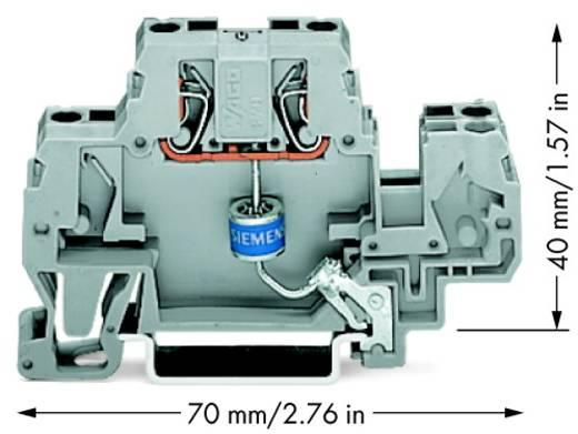 Einzelklemme 10 mm Zugfeder Belegung: L Grau WAGO 870-523/281-579 25 St.
