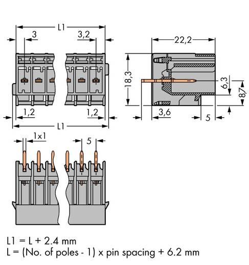 WAGO Buchsengehäuse-Platine 769 Polzahl Gesamt 7 Rastermaß: 5 mm 769-637 50 St.