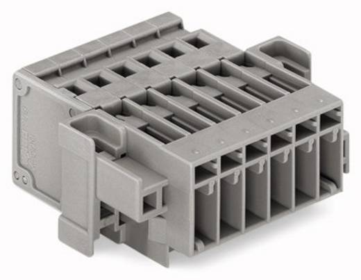 WAGO Buchsengehäuse-Kabel 769 Polzahl Gesamt 7 Rastermaß: 5 mm 769-607/004-000 25 St.